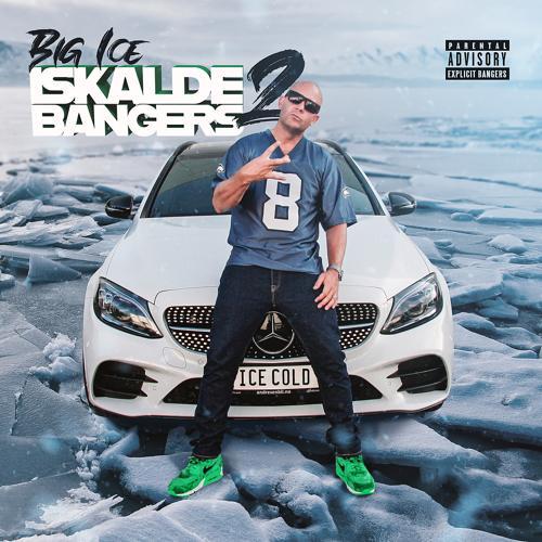 Big Ice, Ralph Myerz, George Clinton, Snoop Dogg, Nipsey Hussle, Domino - Do The Damn Thang (Big Ice Remix)  (2020)