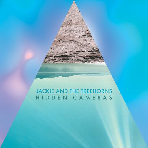 Jackie and The Treehorns - Hidden Cameras  (2020)
