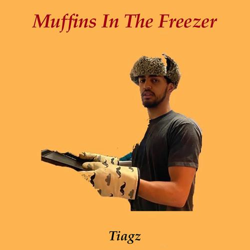 Tiagz - Muffins In The Freezer  (2020)