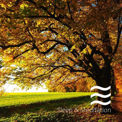 Rainfall For Sleeping - Noisy Tones of Relaxing Raining  (2020)