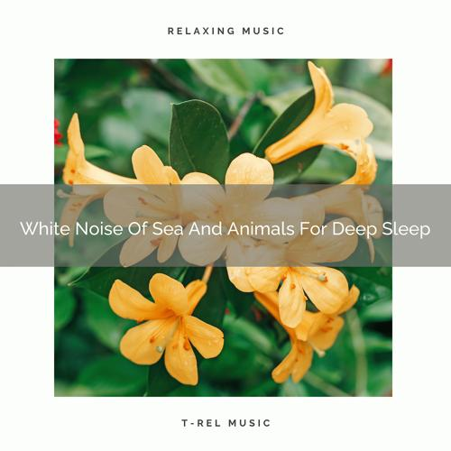 White Noise Spa & Baby Sleep Music - Hard Noises Of Ocean And Woods For Delicious Absolute Recharge  (2020)