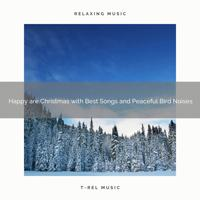Sounds of Nature Relaxation - Merry are Christmas with Classics and Relaxing Wild Birds Songs