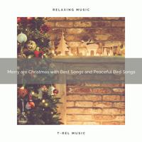 Calming Sounds - Merry are Christmas with Best Songs and Joyful Wild Birds Tweets