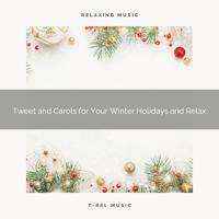 Calming Sounds - Tweet and Classics for Perfect Christmas and Sleep