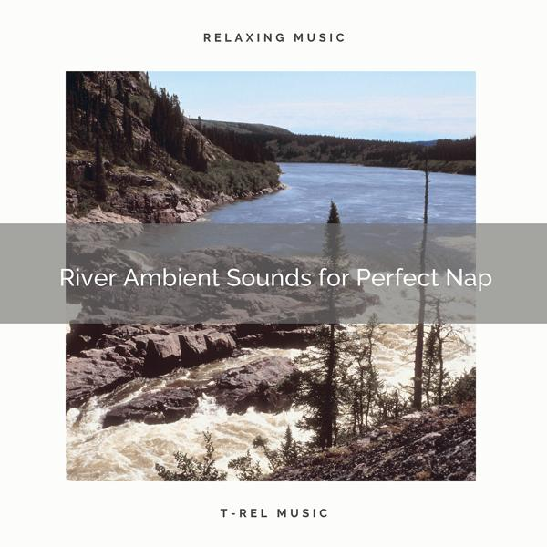 Альбом: River Ambient Sounds for Perfect Nap