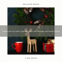 XMAS Mood - Prosperity and Joy Under a Mistletoe with Calm Melodies and Noises