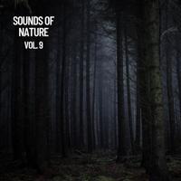 Nature Sounds Nature Music - Sounds of Meditation