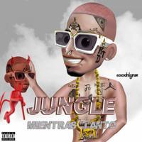 Jungle - Mientras Tanto