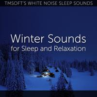 Tmsoft's White Noise Sleep Sounds - Snow and Ice on a Skylight