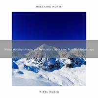 Sleep Sounds of Nature - Winter Holidays in the Woods with Carols and Pure Nature for Relax