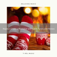 Silent Night Sounds - Rejoice and Joy Under a Mistletoe with Relieving Tunes and Winter Relaxing Sounds