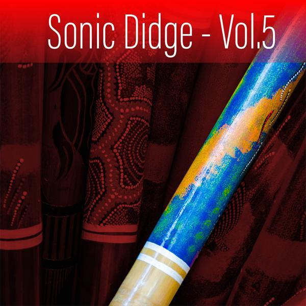 Альбом: Sonic Didge, Vol. 5