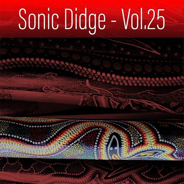 Альбом: Sonic Didge, Vol. 25