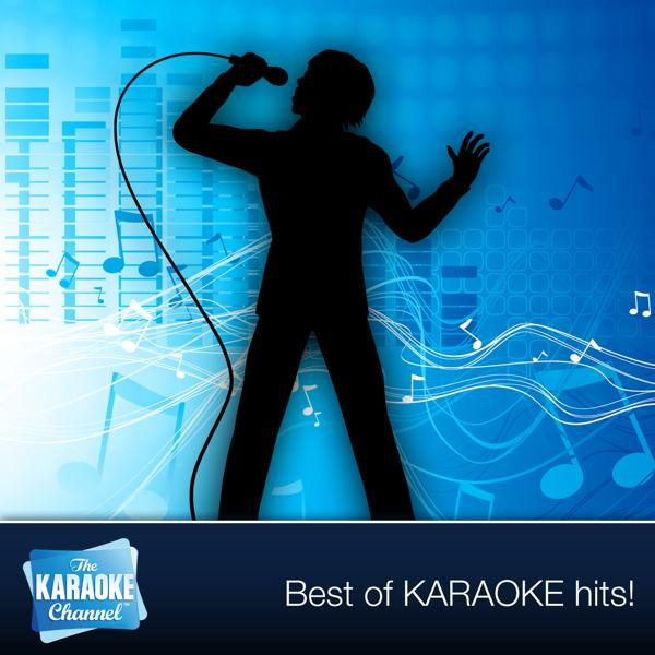Альбом: The Karaoke Channel - Sing Too Bad Like Nickelback