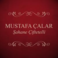 Mustafa Çalar - Mevlana