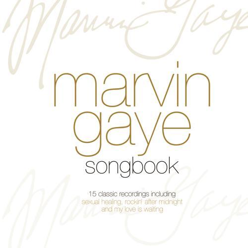 Marvin Gaye - Rockin' After Midnight  (2009)
