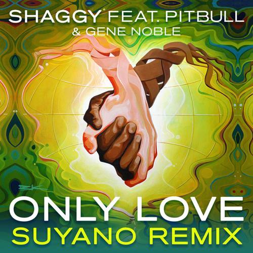 Shaggy, Pitbull, Gene Noble - Only Love (Suyano Remix)  (2015)