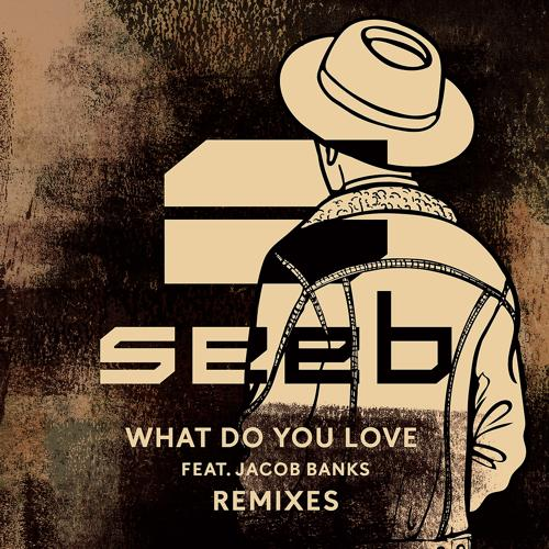 Seeb, Jacob Banks - What Do You Love (Hook N Sling Remix)  (2017)