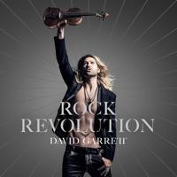 David Garrett - Purple Rain