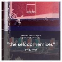 Quivver - Wait for You (Smash TV Remix)