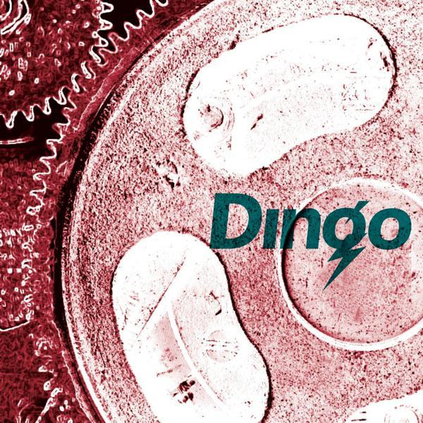 Альбом: DINGO