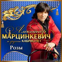 Александр Марцинкевич - Цепи